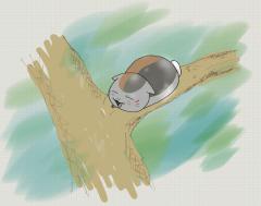 nyanko_sensei_on_tree_w